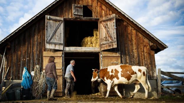 Stark vertreten in der Ostschweiz: Der Landwirtschaftssektor.