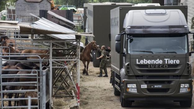 In Hefenhofen musste der Hof eines mutmasslichen Tierquälers unter Zwang geräumt werden.