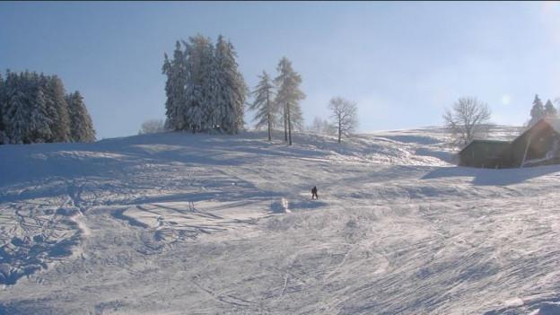 Der Skilift führt bis auf 1100 Meter hinauf.