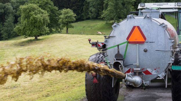 Güllen: St. Gallen geht gegen Bauern vor.