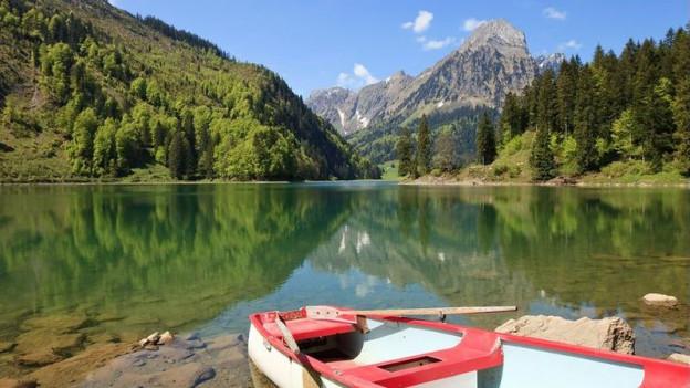 Die Wasserpest stört Idylle am Obersee