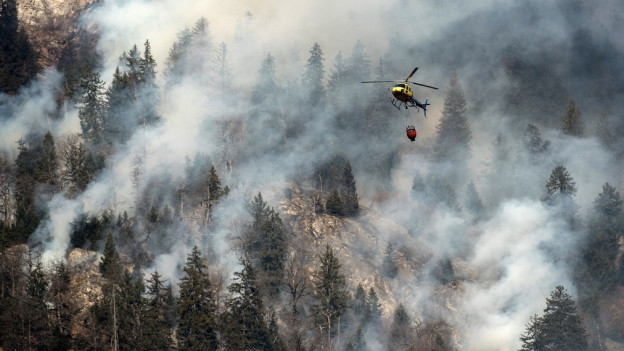 Helikopter fliegt über Waldbrand
