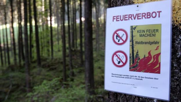 Ein Schild in einem Wald weist auf das Feuerverbot hin.