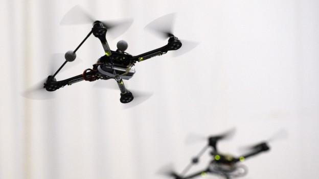 In Rapperswil-Jona findet ein Drohnenrennen statt, das weltweit von Millionen Zuschauern mitverfolgt wird.