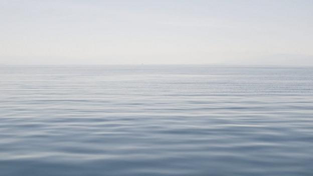 Der Bodensee soll von überall her frei zugänglich sein.
