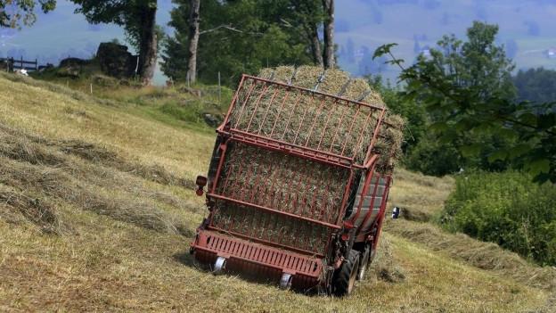 Den Ostschweizer Bauern geht das Heu aus