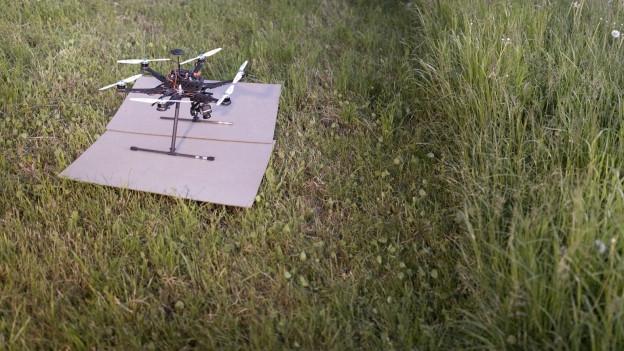 Drohne auf einer Wiese