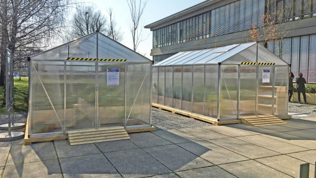 Klimagarten Rapperswil: Eine Schweiz ohne Gras und Zuckerrüben