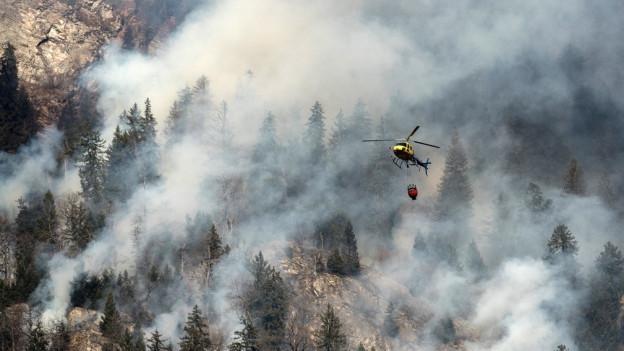 Graubünden rüstet sich gegen erhöhtes Waldbrandrisiko