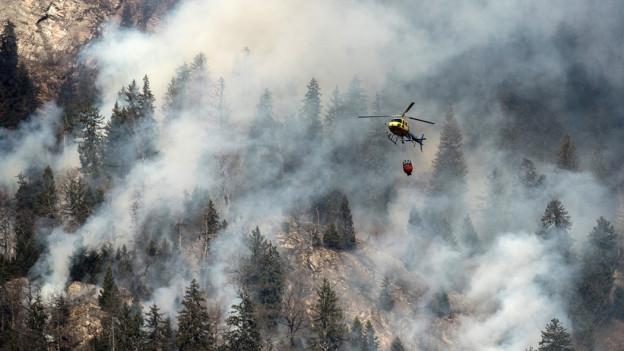 20 Millionen für Waldbrandbekämpfung