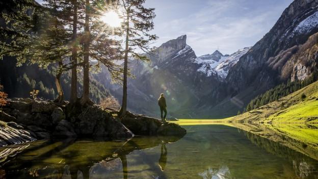 Wanderer Steht am See