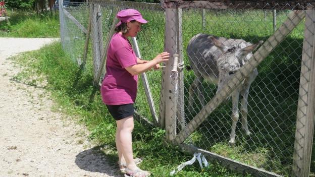 Junge Frau streichelt Esel