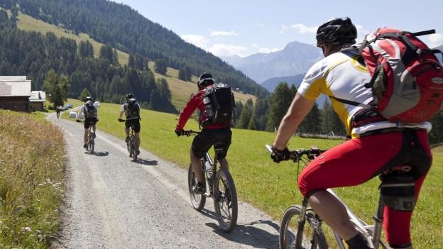 Biker auf Bergweg