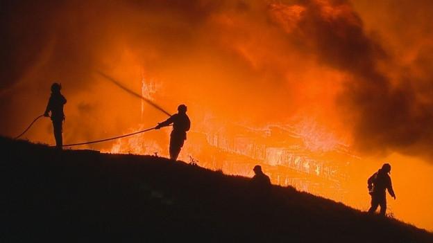 Am Mittwochmorgen brannte in Hörhausen eine Produktionshalle.