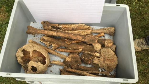 Archäologischer Fund fällt Neubau zum Opfer