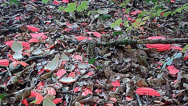 Der Boden der Jagdschiessanlage Au ist dick mit Scherben übersät.