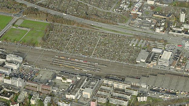 Schrebergärten in Altstetten: Geplanter Standort für das Eisstadion.