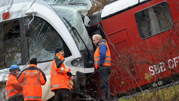 Bild der Unfallstelle bei Neuhausen, wo die beiden Züge zusammengestossen sind.