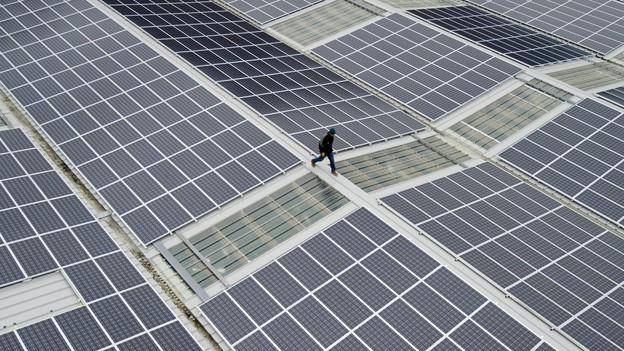 Alternative Energien, wie zum Beispiel Solardächer, sollen obligatorisch gebaut werden müssen.