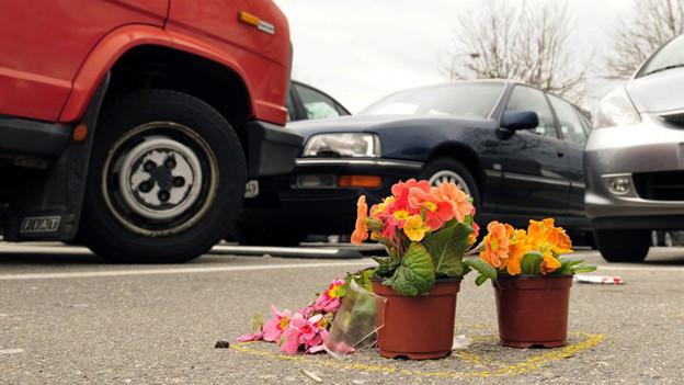 Blumen am Tatort: was die Tat auf dem Parkplatz Volketswil Mord oder ein Unfall?