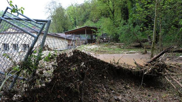 Ein Tierheim in Schaffhausen wurde von den Wassermassen komplett zerstört.