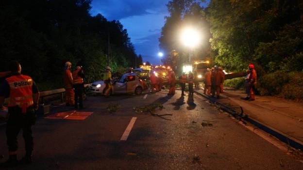 Der Baum stürzte auf das fahrende Auto.