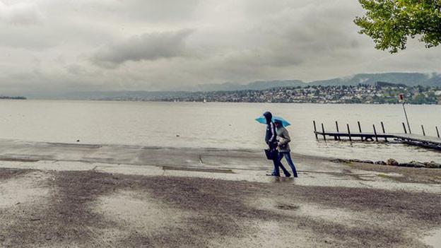 «Zürisee für alli»: Ein durchgehender Seeuferweg scheitert im Zürcher Kantonsrat.