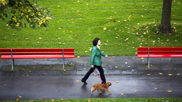 Auch wenn sie brav bei Fuss gehen, sollen Hunde in Zürich nicht weniger Steuern kosten.