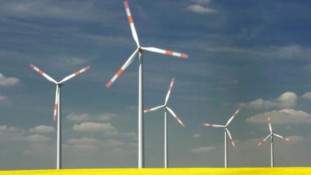 Windräder auf einem Feld.