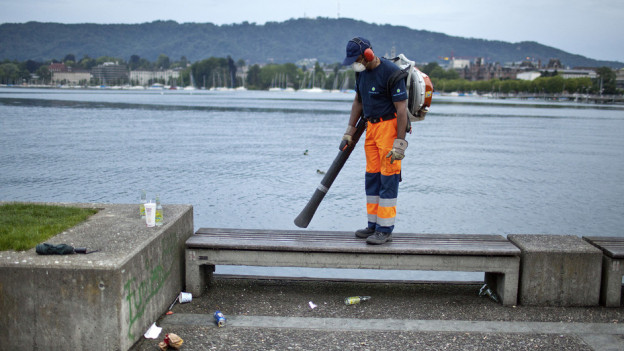Laubbläser am Zürichsee