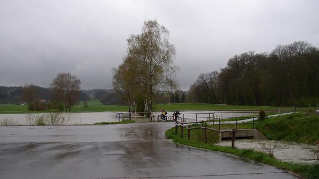 Das Rückhaltebecken in Rickenbach.