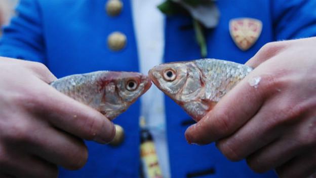 Ein Zünfter hält zwei tote Fische.