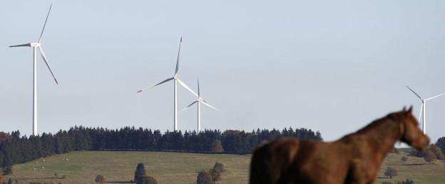 Windenergie: Auch Kanton Zürich hat Potenzial