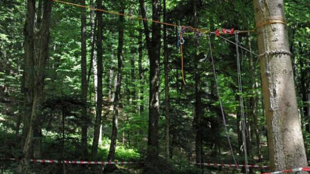 Eine selbstgebaute Seilbahn im Wald.