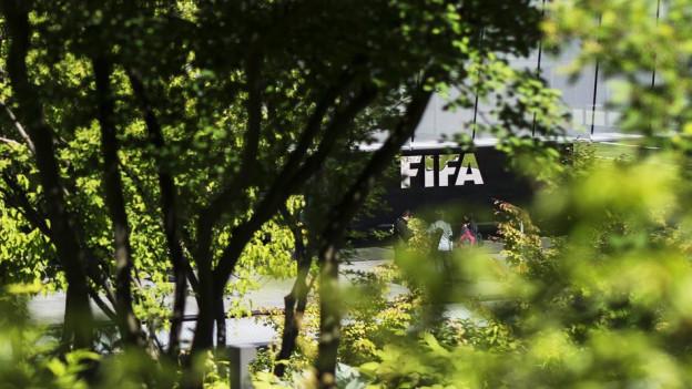 Das Fifa-Gebäude, durch Büsche fotografiert.