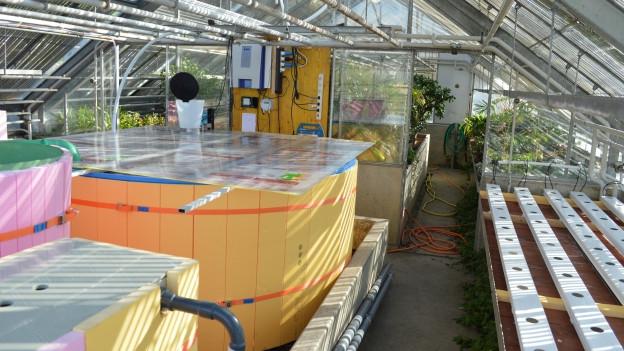 Fischzucht-Versuchsanlage der landwirtschaftlichen Schule Strickhof