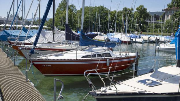 Sie gehören zu den Glücklichen, die einen der begehrten 2300 Bootsplätze der Stadt Zürich ergattert haben.
