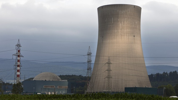 Kein Atomstrom mehr in 20 Jahren, fordert das Stadtparlament.