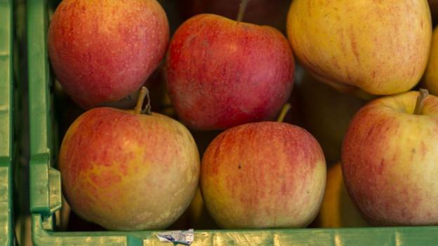 Gala-Äpfel in einer Kiste.