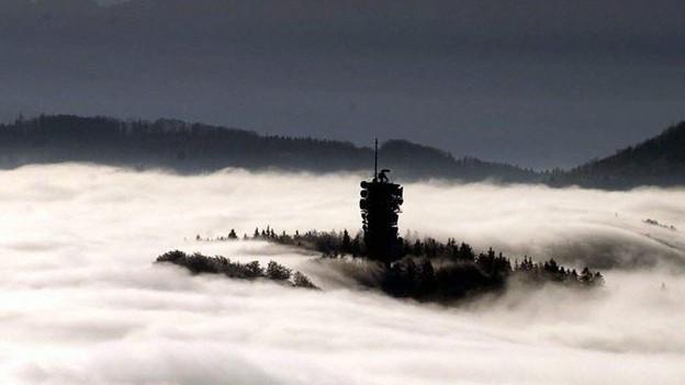 Üetliberg oberhalb des Nebelmeers