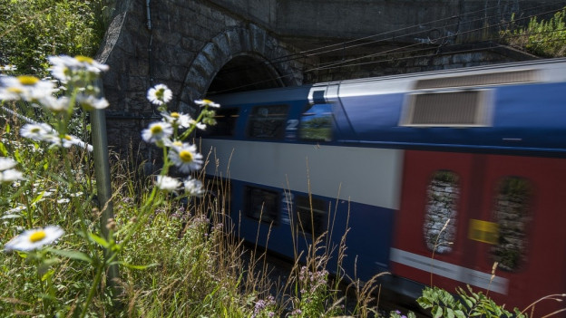 Dieser Tunnel bei Thalwil lässt nur 1 Zug aufs Mal durch.