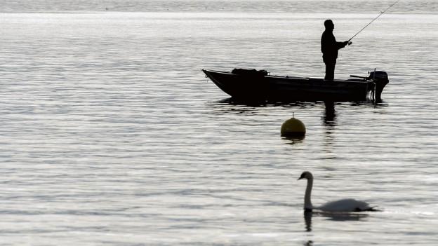 Ein Fischer auf dem Zürichsee.
