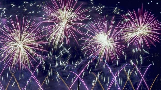 Das erste Feuerwerk in Zürich begeistert Hundertausende.
