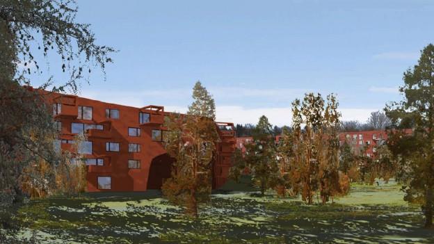 Geplante Wohnsiedlung «Ringling» (Visualisierung)
