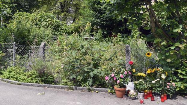 Blumen am Wegrand, dahinter Gärten und Büsche.