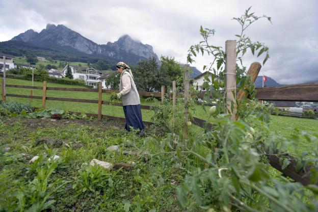 Eine Kurdin arbeitet in einem Gemüsegarten