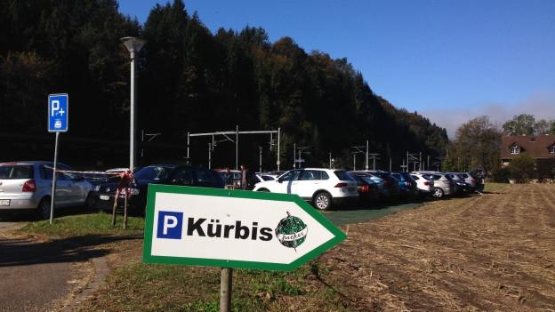 Parkplätze für die Kürbisausstellung in Seegräben