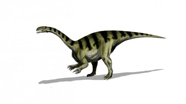 Ein Dinosaurer mit langem Hals, langem Schwanz, der auf zwei Beinen geht.