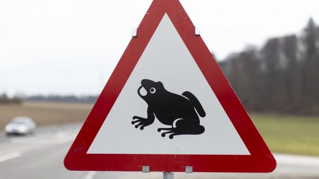 Kloten, Embrach und Nürensdorf sagen Ja zum Sanierungskonzept Eigentalstrasse.