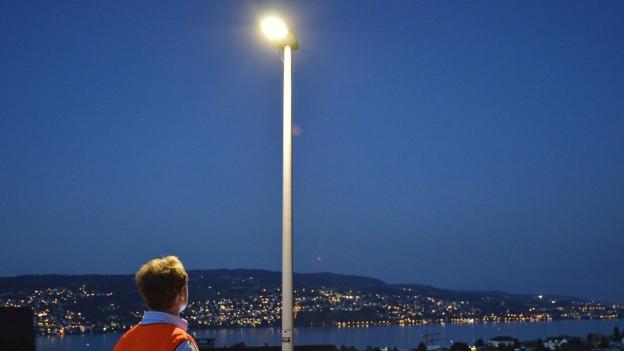 Eine Strassenlampe, dahinter das Ufer des Zürichsees.